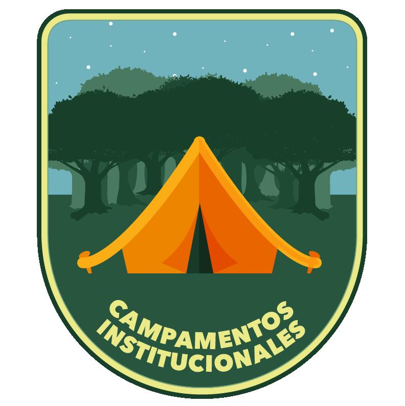 campamentos institucionales